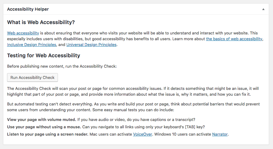 WordPress meta box with information about accessibility and manual testing.